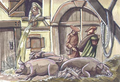 stadtschweine