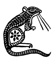 Ratte-web